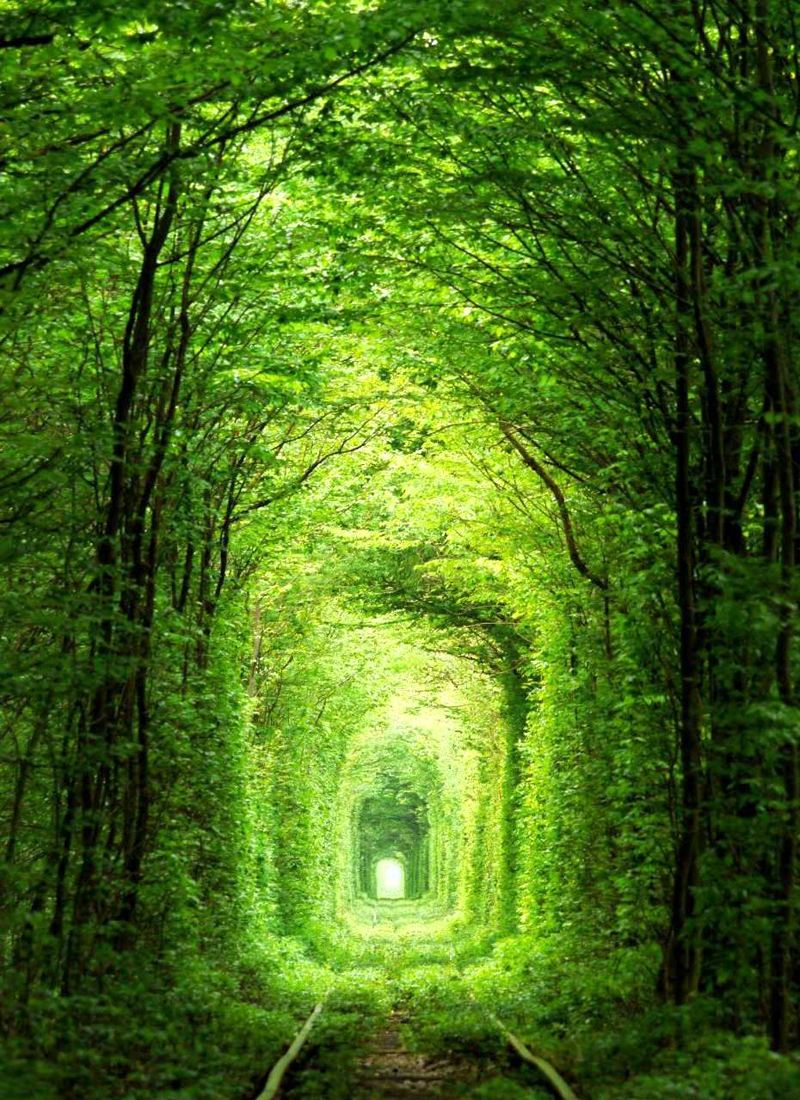 Tunnel-of-love-Unraine