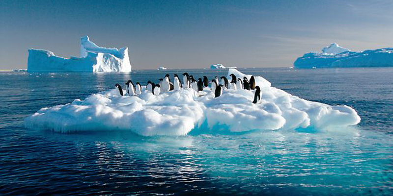 481704-antarctic-sea-ice