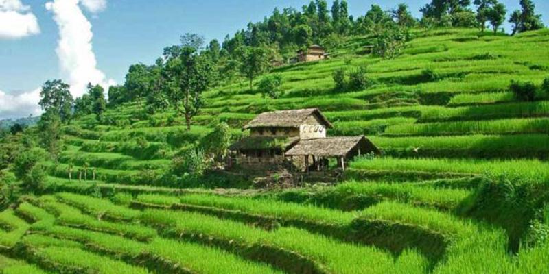 nepal-easy-trekking64