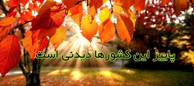 1395364828-autumn+leaves.jpg-original