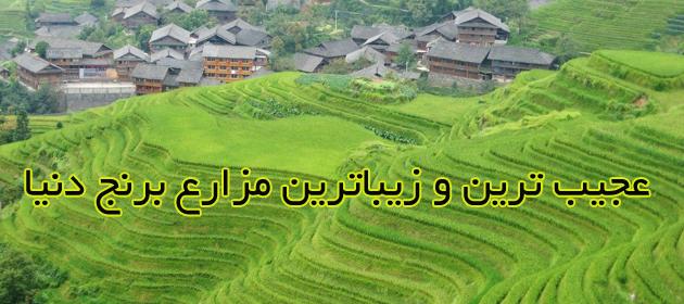 Longsheng-Rice-Terraces-China