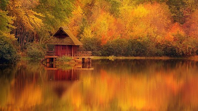 cabin_retreat_in_autumn