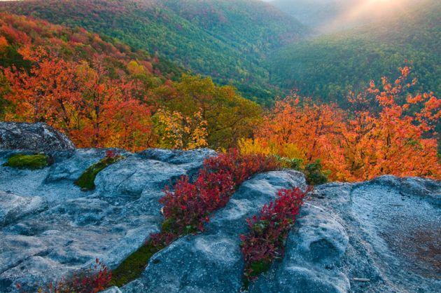 ویرجینیای غربی4