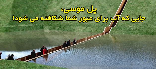 پل موسی8
