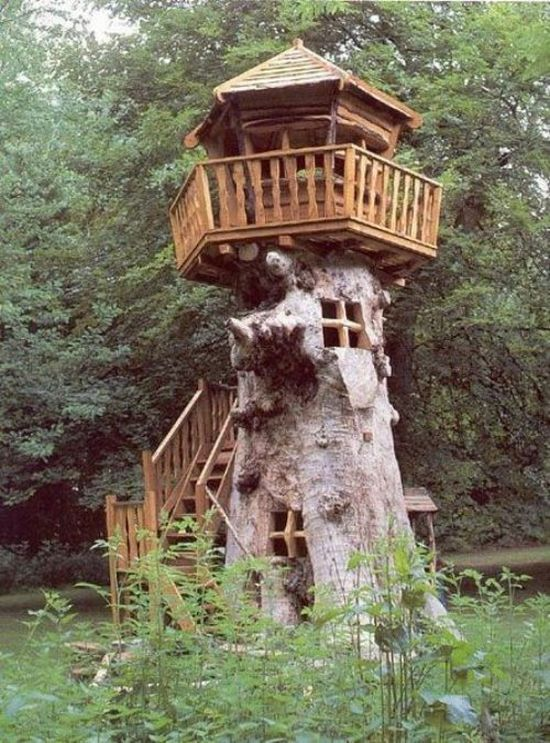 Awesome-tree-houses10