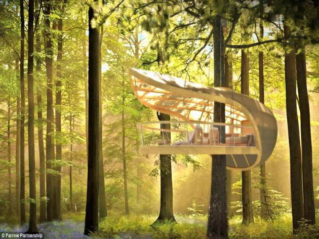 Luxury-Cool-Tree-Houses-Villa
