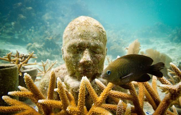 Museo_Subacuático_de_Arte_underwater_museum-19