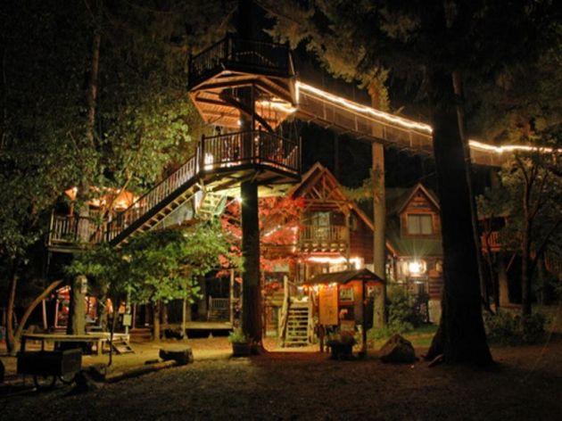 Tree_house_6