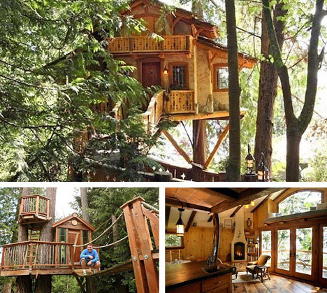 seattle-tree-house-architectural-designers