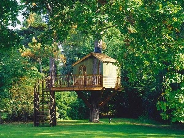 tree_house_05