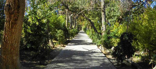 شوکت آباد 5