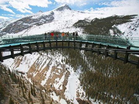 پیاده روی در آسمان یخچال طبیعی کانادا1