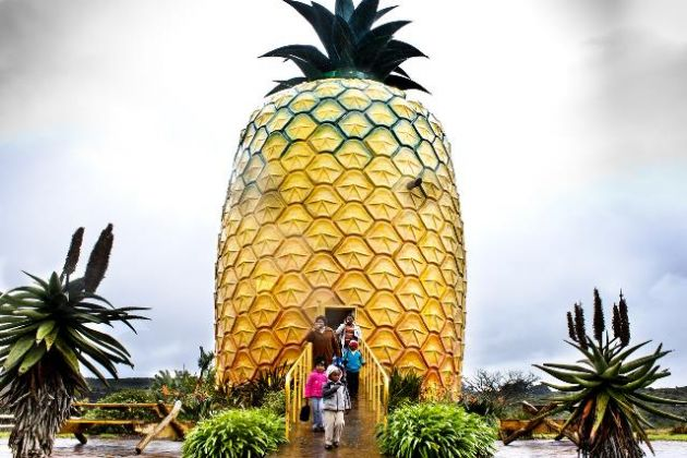 Bathurst-Big-Pineapple