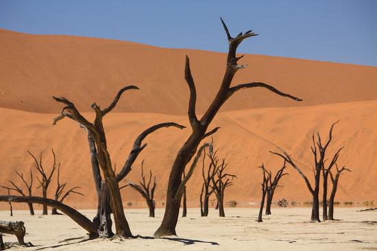 Namib-Naukluft-Park-1