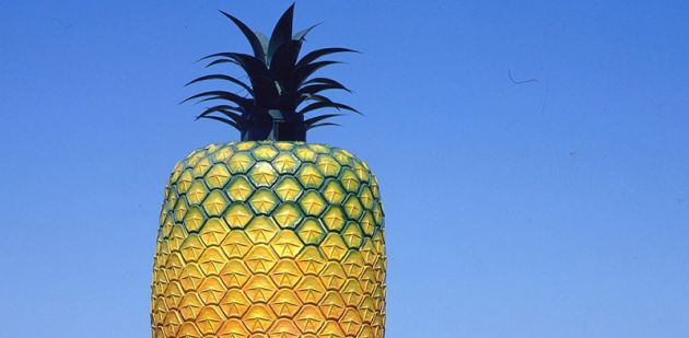 Pineapple2_1_960_472_80auto_s_c1_center_top