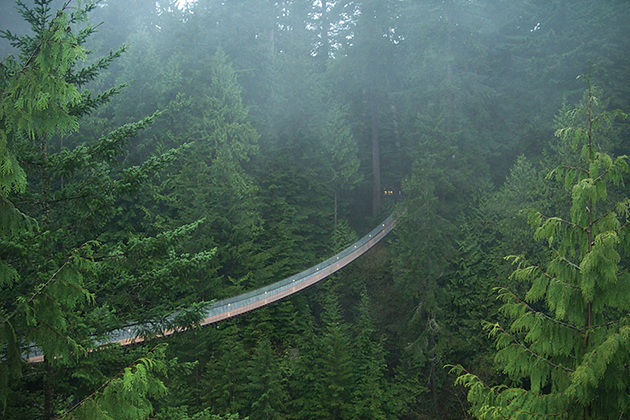 Capilano-Suspension-Bridge-in-Canada
