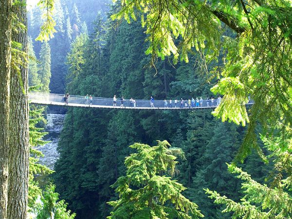 Vancouver-Capilano-Bridge2