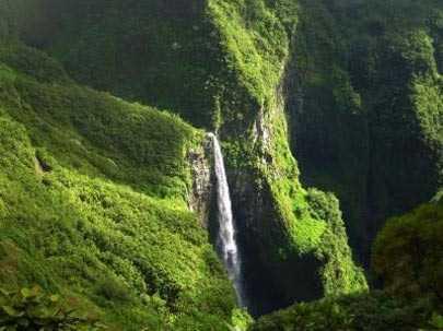 تنگه-ای-زیبا-و-شگفت-انگیز-در-ماداگاسکار-6