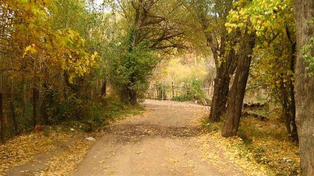 روستای-جزینان-18015-همگردی