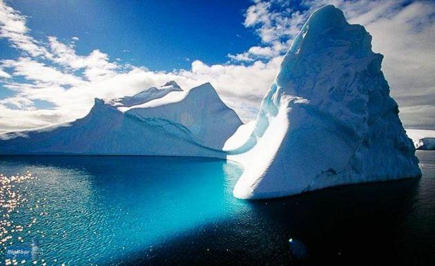 آنتارکتیکا (10)
