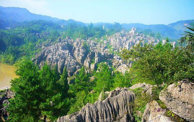 جنگل سنگ (10)