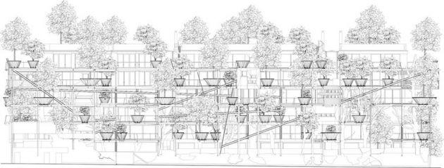 خانه درختی (13)