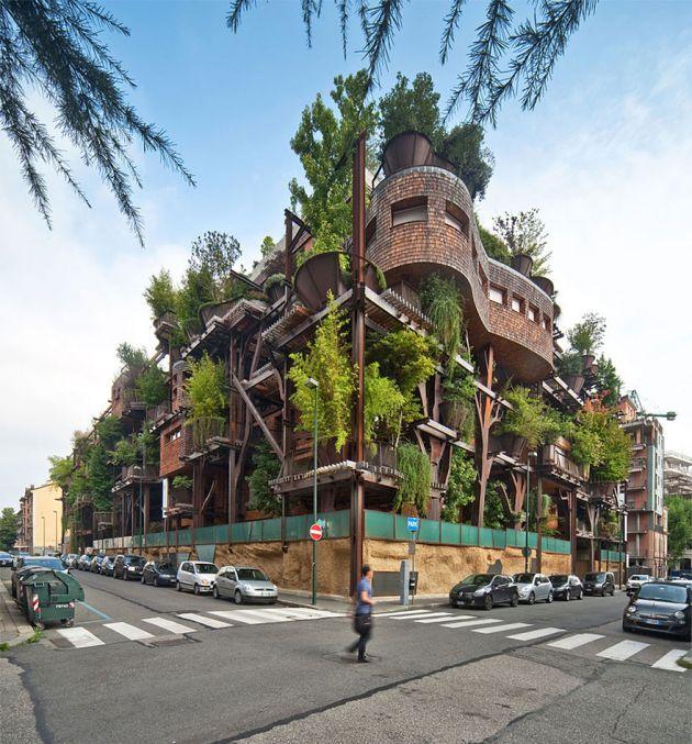 خانه درختی (3)