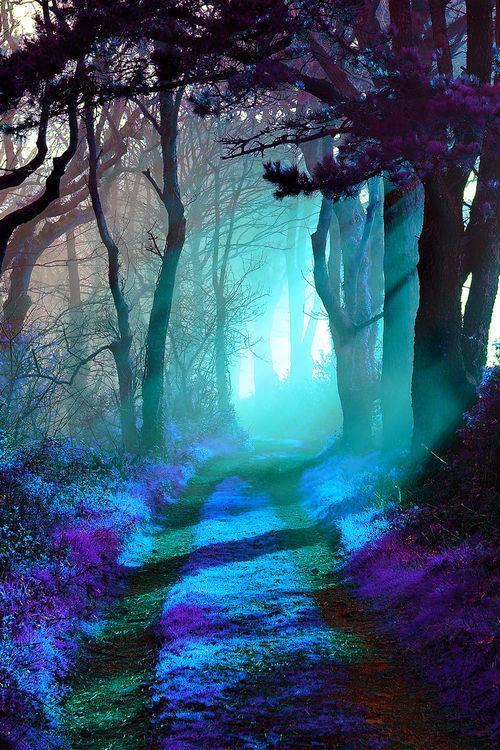 طبیعت آبی (1)