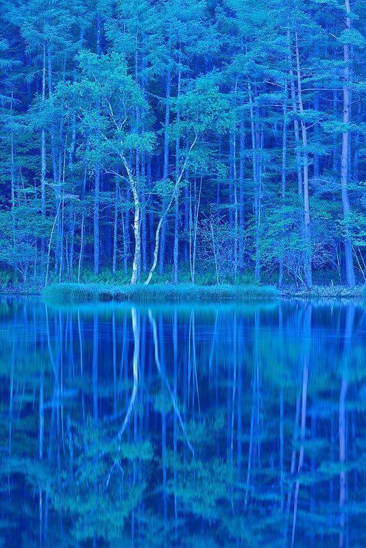طبیعت آبی (17)