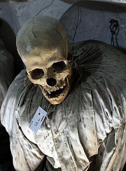 موزه جنازه های مومیایی (4)