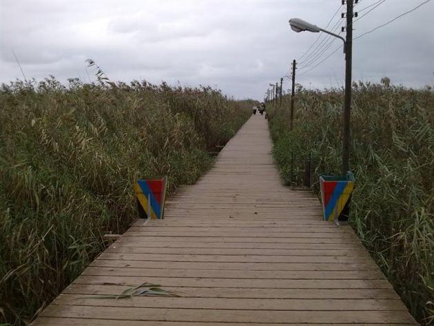 پل چوبی کیاشهر (3)