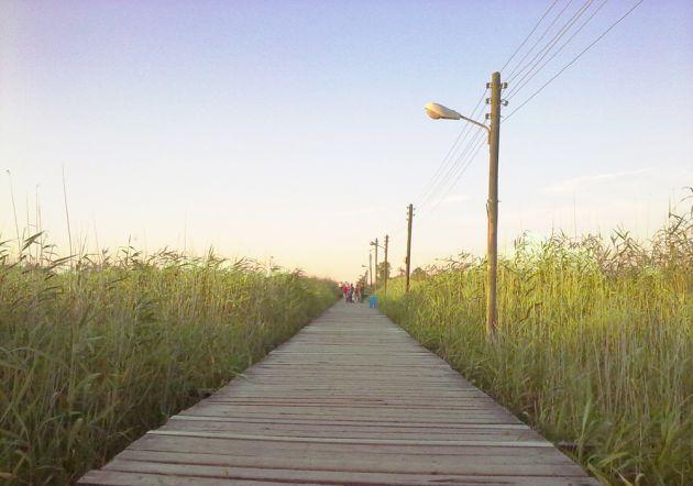 پل چوبی کیاشهر (5)