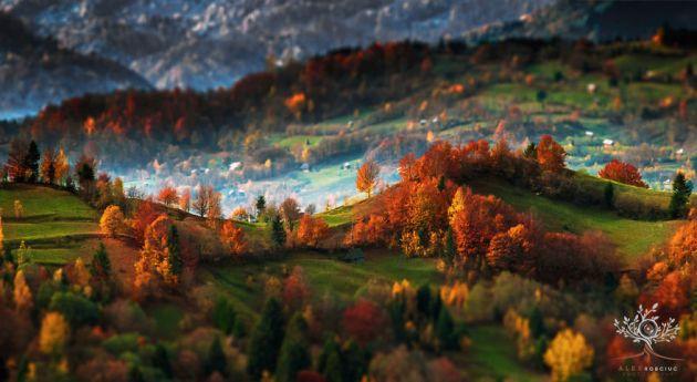 کوه های ترانسیلوانیا (11)