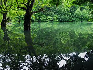 300px-Lake_miansheh