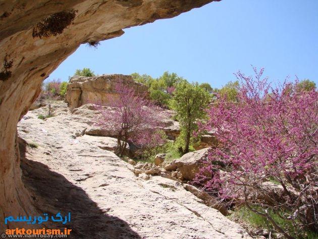 دره ارغوان2