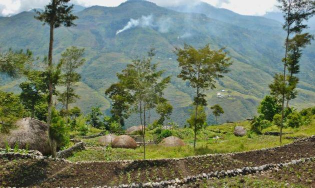 قبیله دانی در دره بالیم (4)