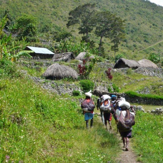 قبیله دانی در دره بالیم (5)