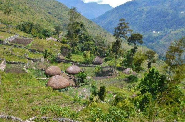قبیله دانی در دره بالیم (6)