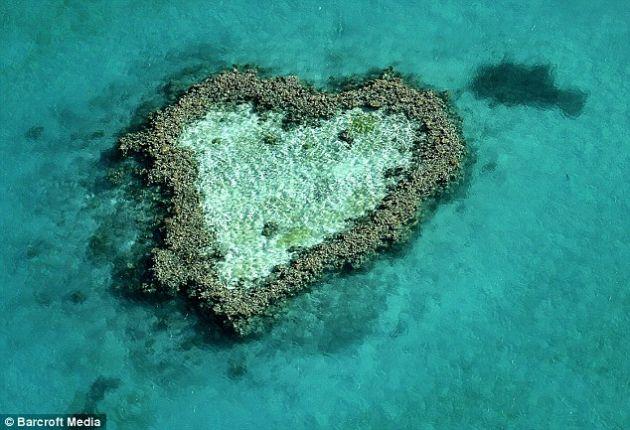قلب طبیعت (1)