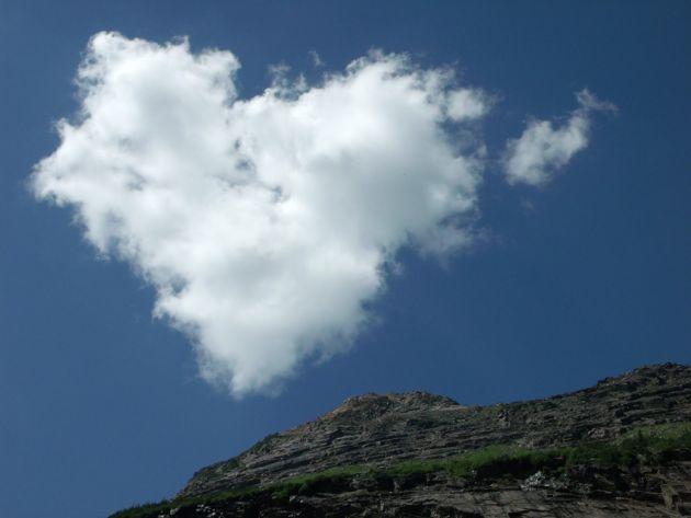 قلب طبیعت (13)