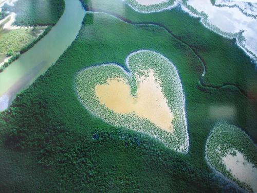 قلب طبیعت (24)