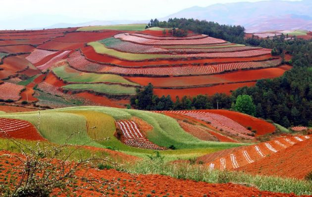 Beautiful-red-landscape-of-the-Dongchuan-District