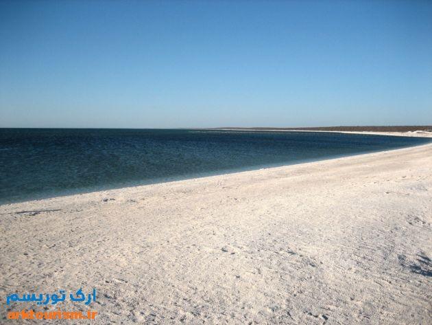 Shell-Beach5