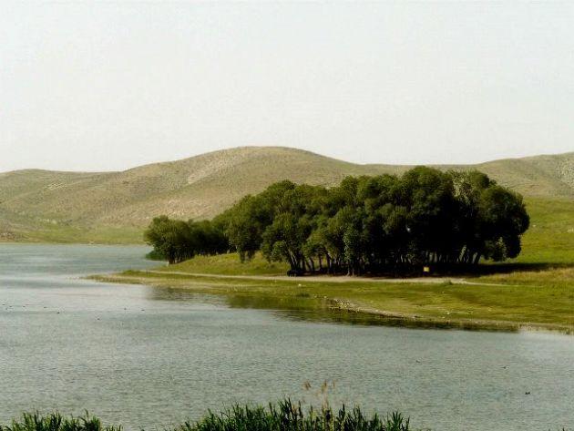 ghori-gol-tabriz (9)-1393493875