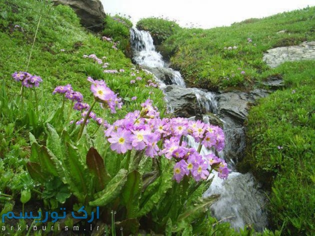آبشارسولهدوکل (1)