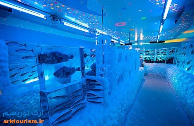 آکواریوم یخی ژاپن (7)