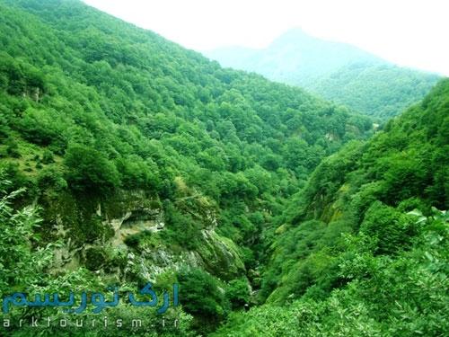 جنگل-فندقلو11