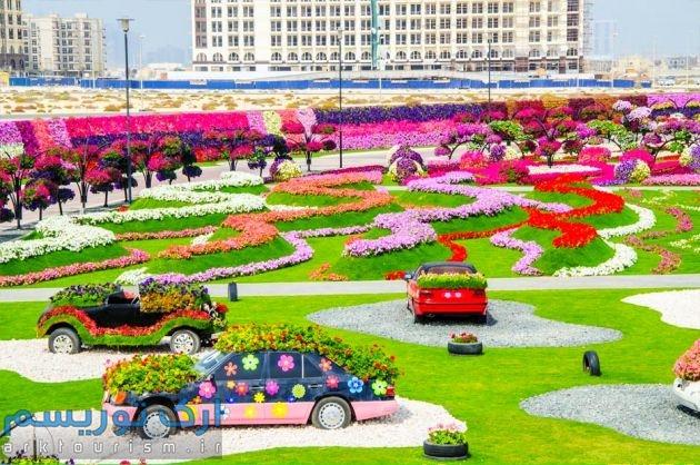 Dubai-Miracle-Garden-101