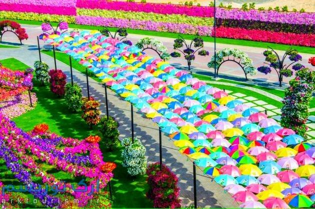Dubai-Miracle-Garden-131