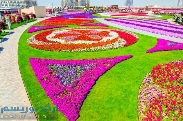 Dubai-Miracle-Garden-151